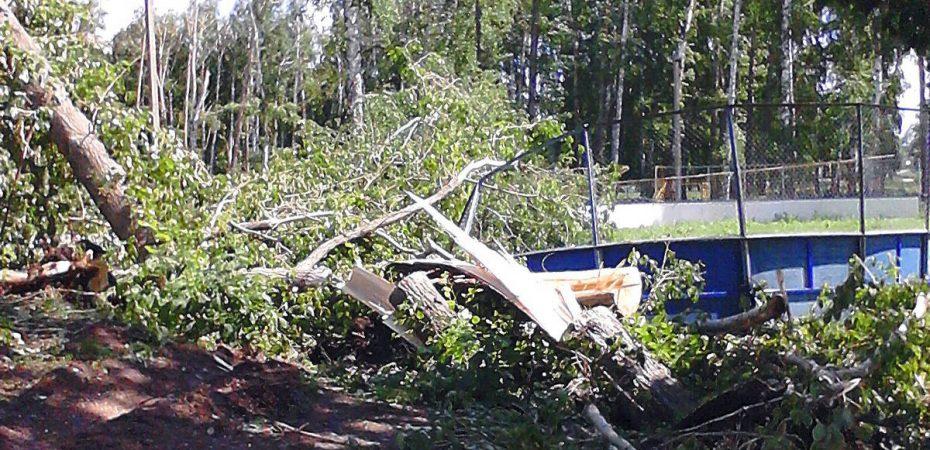Последствия урагана в Старой Майне Ульяновской области