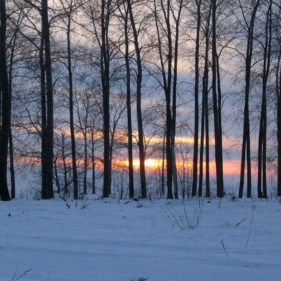 посадка на берегу фотографии старая майна ульяновской области
