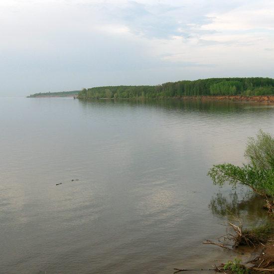 берег волги фотографии старая майна ульяновской области