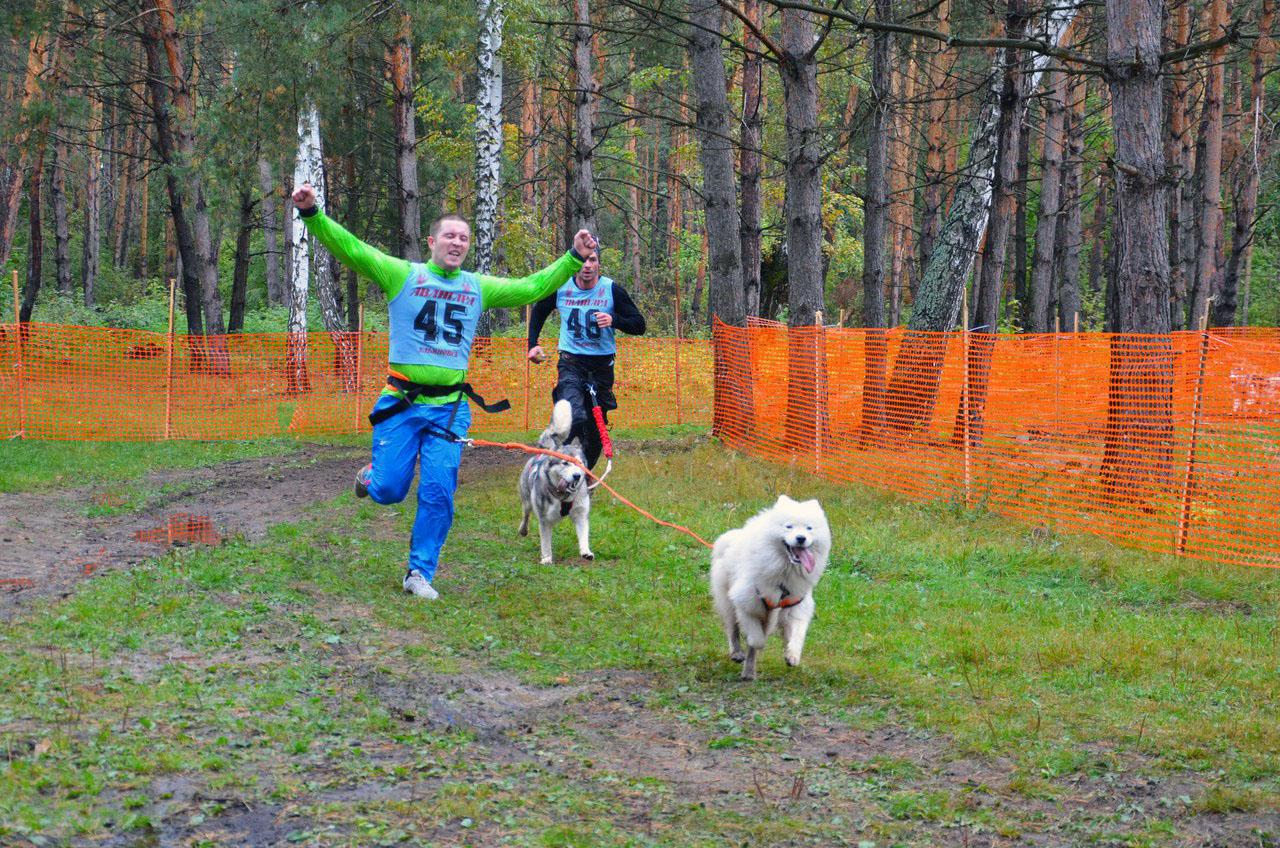 13 октября гонка на ездовых собаках в эко-парке «Русский Берег»