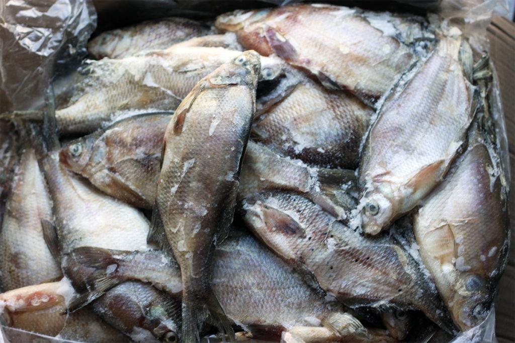 В Старой Майне украли 600кг свежемороженой рыбы